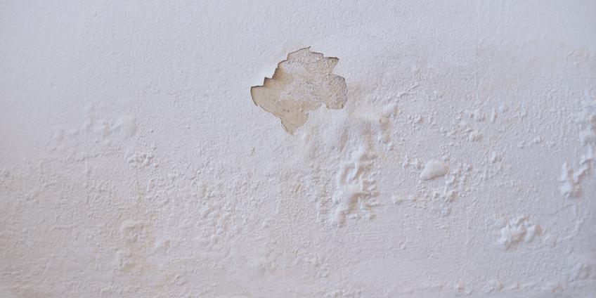 Murs humides