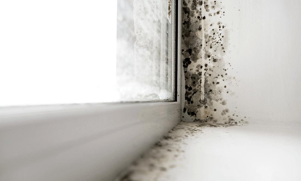 Humidité de condensation